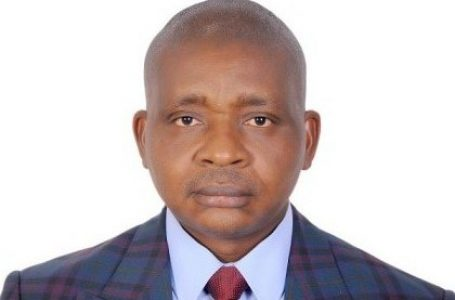 A CASE  FOR OPCW – By Sunday Oyinloye