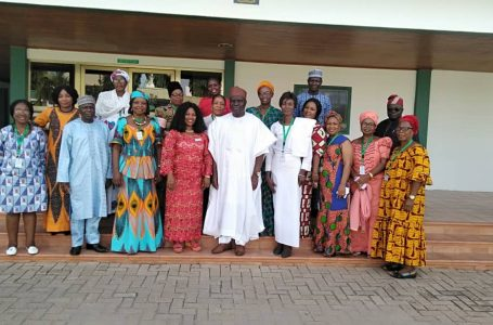 Emulate positive development happing at home, Ambassador charges Nigerians in diaspora