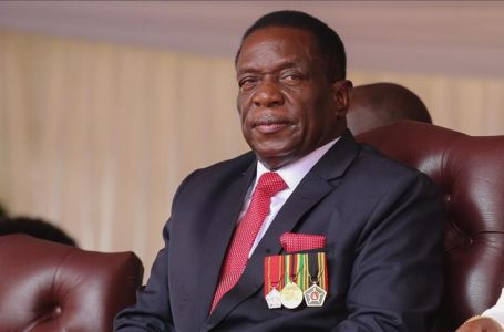 We will remove you in five months, opposition tells Zimbabwean president