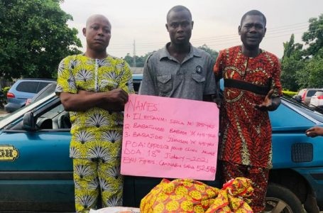 Labour leader, others caught with 52.5kilograms of illicit drug