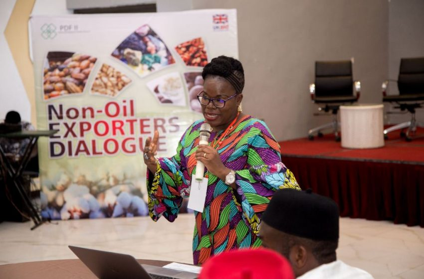 Agrochains Consult provides rare opportunity for would be exporters in Nigeria