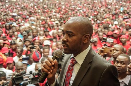 Hundreds of MDC Alliance leaders in detention- Nelson Chamisa