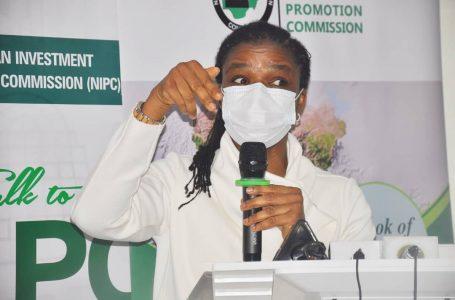 Executive Secretary/CEO of Nigerian Investment Promotion Commission, Yewande Sadiku